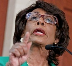 http://www.davidmcelroy.org/wp-content/uploads/2011/08/maxine_waters.jpg