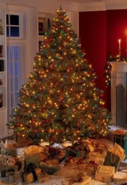 Christmas tree-living room